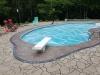 Backyard Pool Oasis 8