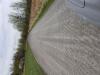 Graded DrivewayLangille2